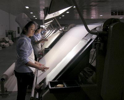 china, mill, textile industry, weiqiao textile company, shandong province