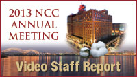2013-am-video-staff-report-icon-