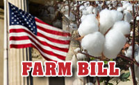 13-farm-bill-graphic