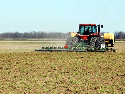 Numerous studies have evaluated the effects of tillage practices and cover crops on soil erosion and cotton yields, but none have focused an economic analysis of these two practices together. Economic analysis indicated that yield increases associated with planting cover crops did not compensate for the added expense.