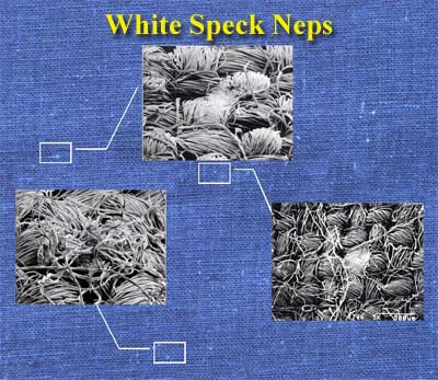 Scanning electron microscopy shows that white specks are a mass of immature fibers that have flat, ribbon-like appearance.  They appear on the surface of darkly dyed fabrics as specks or non-uniform streaks.  To eliminate subjective analysis of white specks on fabrics, procedures to quantify white specks using image analysis are described.