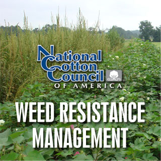 weed-resistance-graphic-320